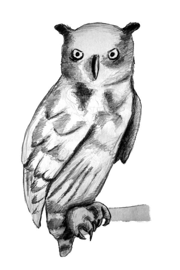 Coruja de águia ilustração royalty free