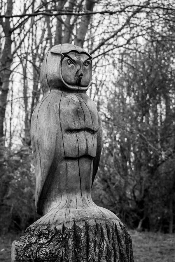 Coruja de madeira cinzelada em madeiras de Plessey fotos de stock