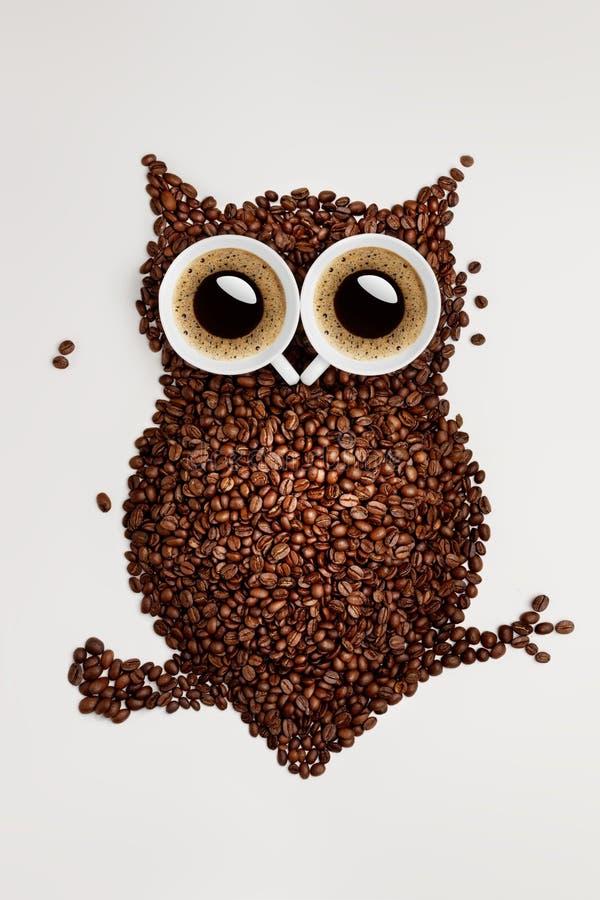 Coruja do café. fotos de stock