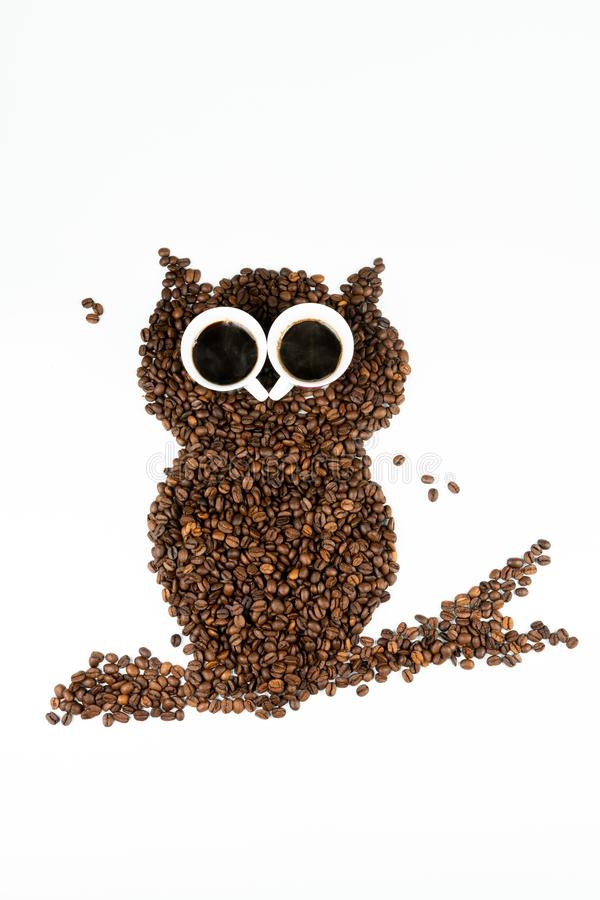 Coruja do caf? no fundo branco fotos de stock royalty free
