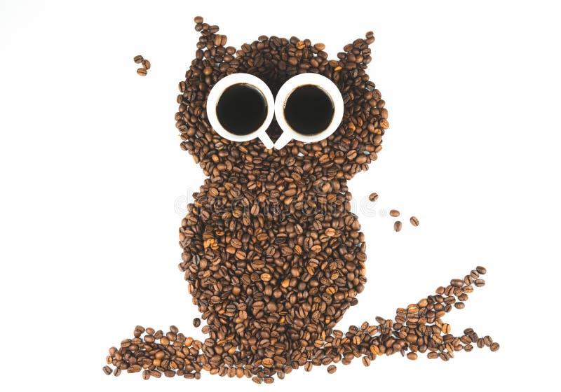 Coruja do caf? no fundo branco fotografia de stock