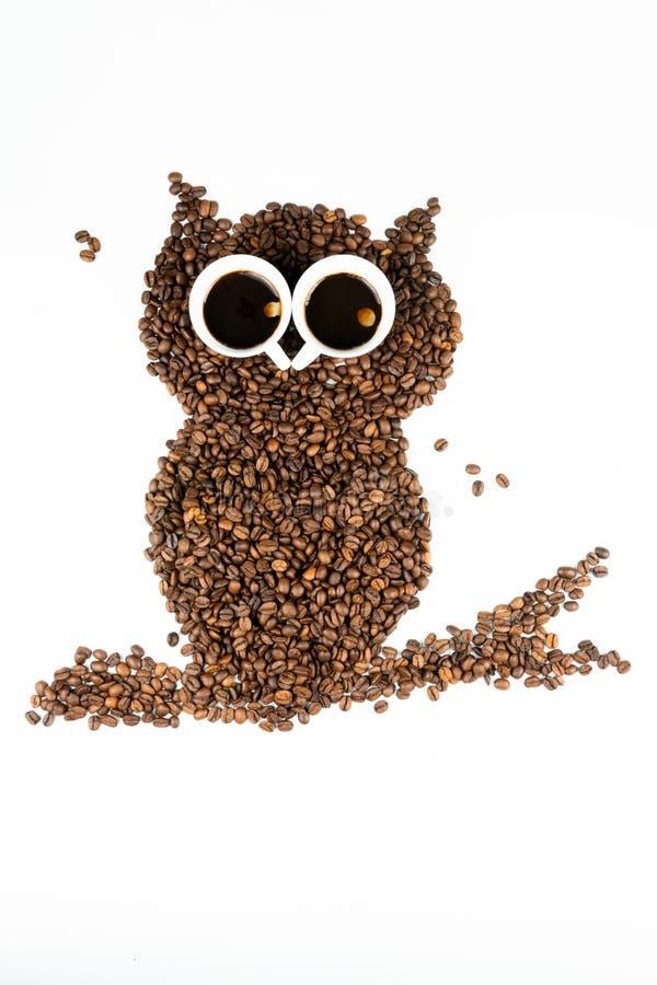 Coruja do caf? no fundo branco imagens de stock