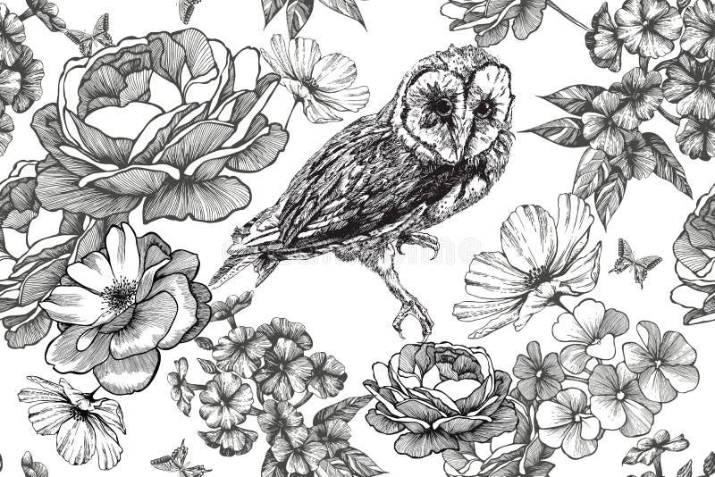 Coruja do pássaro e fundo floral sem emenda com rosas e flox Desenhado à mão, ilustração do vetor ilustração do vetor