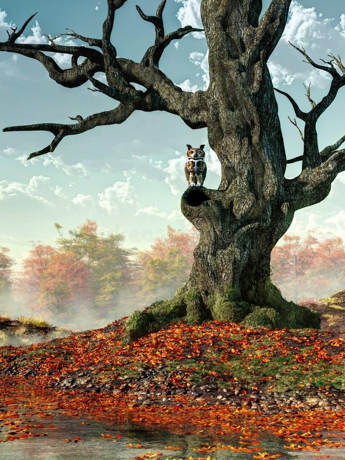 Coruja e árvore da queda ilustração stock