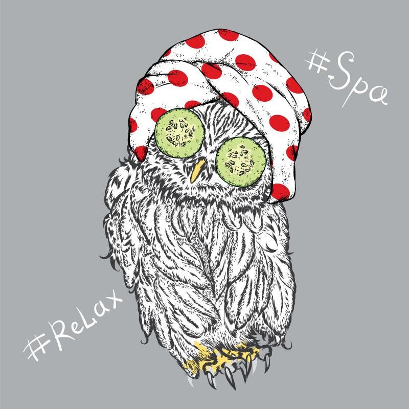 Coruja engraçada na máscara cosmética e em uma toalha Pássaro com o pepino em seus olhos ilustração do vetor