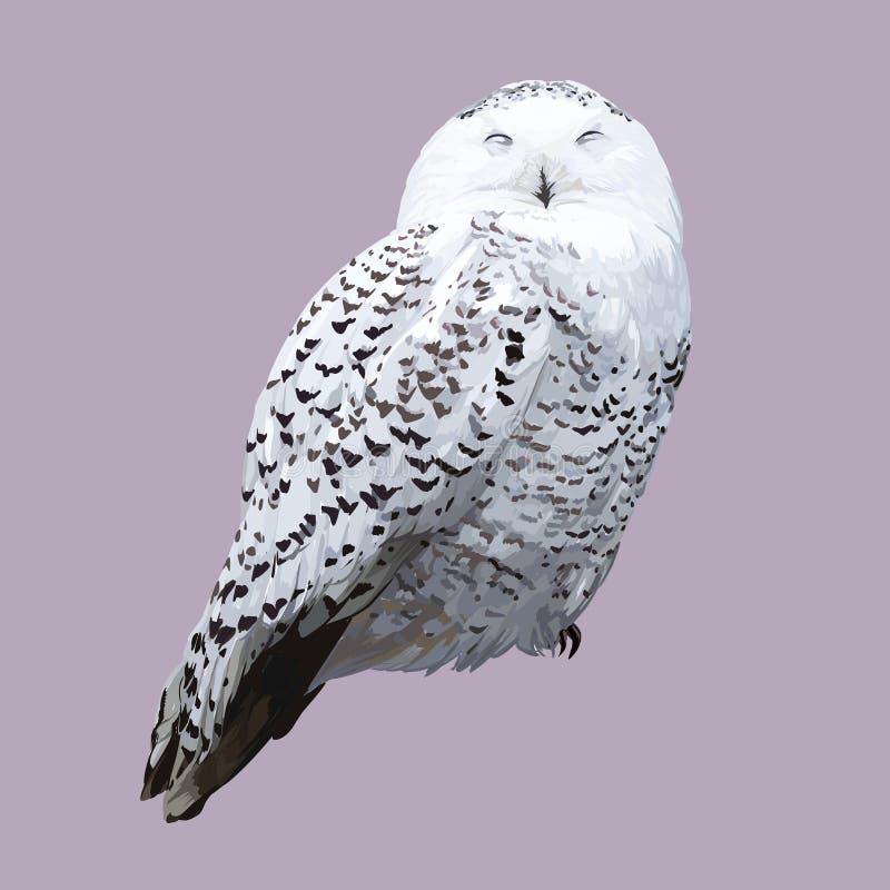 Coruja polar branca Ilustração realística detalhada ilustração stock