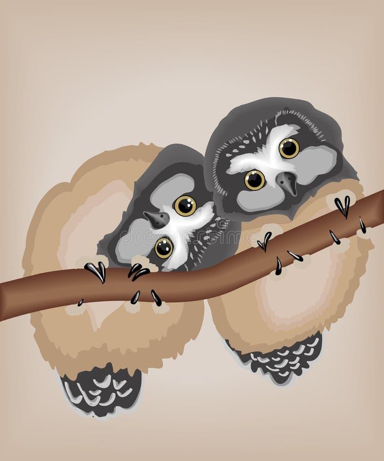 Corujas bonitos ilustração royalty free