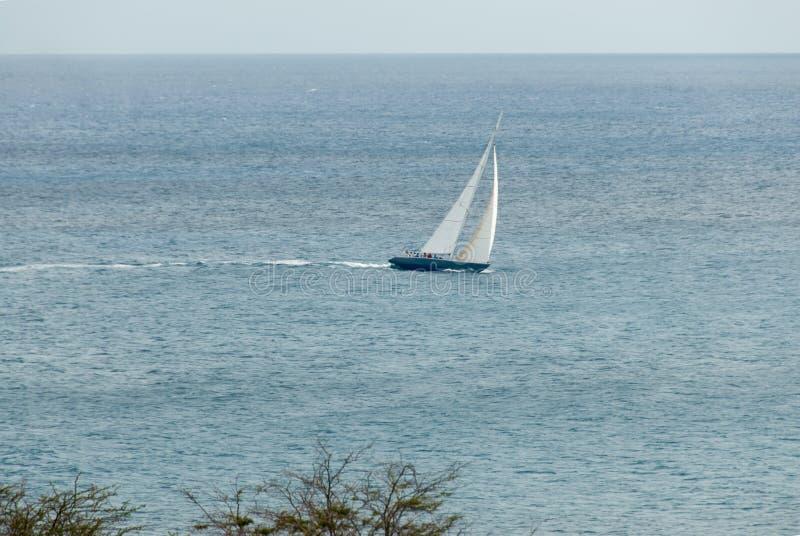 Corvetta di navigazione nel VI caraibico immagini stock libere da diritti