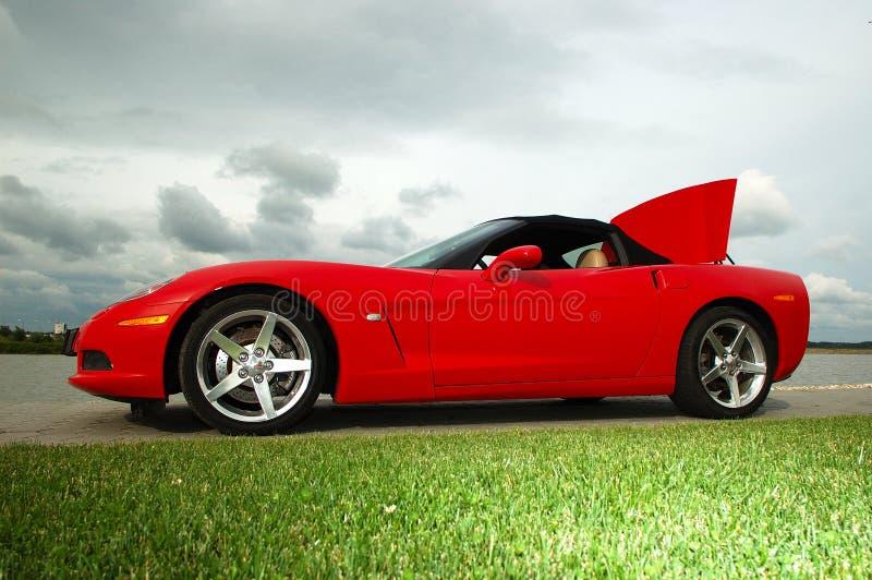 Corvette_03 royalty-vrije stock fotografie