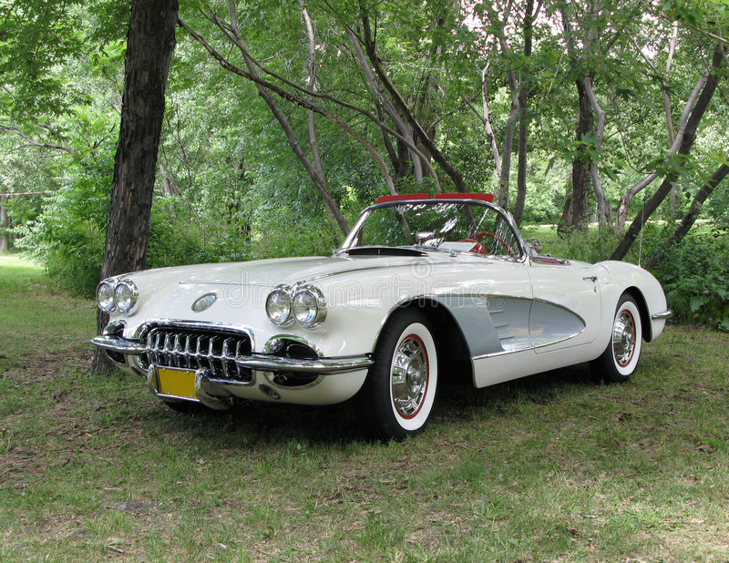 Corvette Convertible stock image