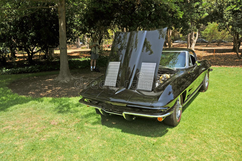 Corvette stingray arkivfoton