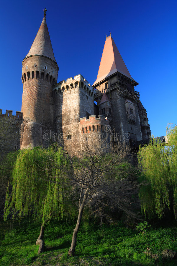 corvinesti замока стоковая фотография