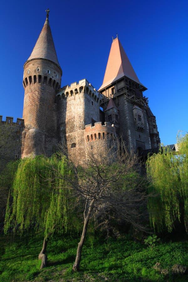 Corvinesti Castle stock photography