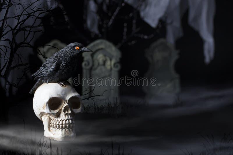 Corvo e crânio de Dia das Bruxas fotografia de stock royalty free