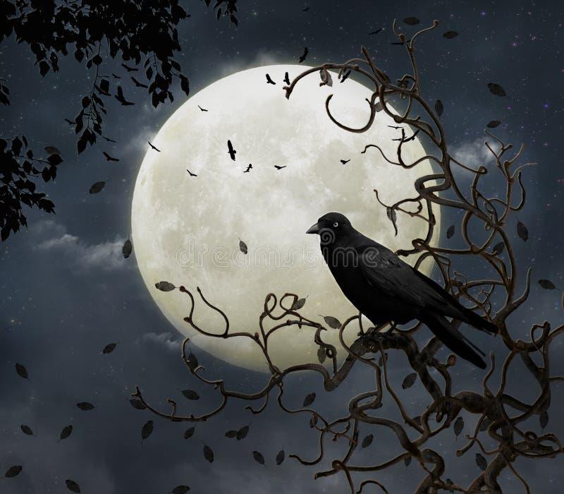 Corvo e lua ilustração royalty free