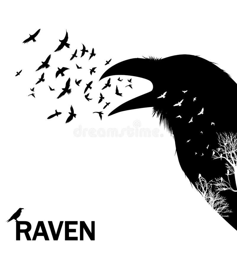 Corvo o corvo di gracidamento Illustrazione di vettore royalty illustrazione gratis