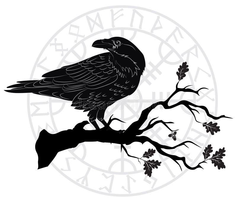 Corvo preto que sentam-se em um ramo de um carvalho, e runas escandinavas ilustração stock