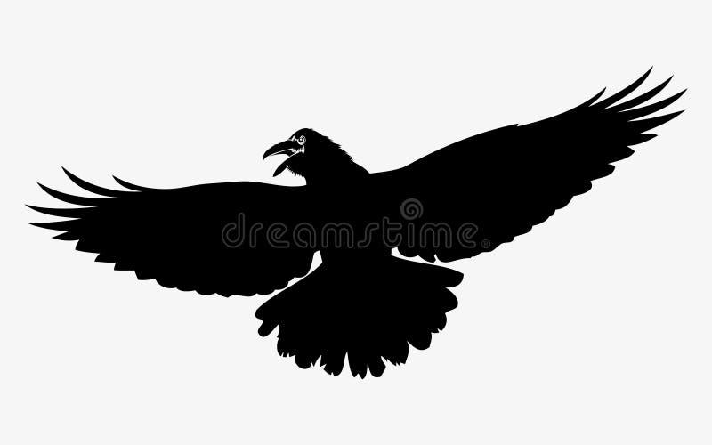 Corvo volante illustrazione di stock