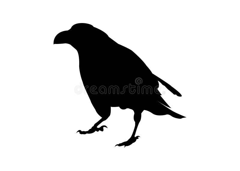 Corvusschattenbild stock abbildung