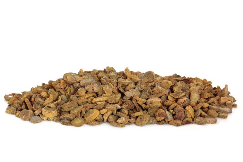 Download Corydalis Tuber stock photo. Image of alternative, medicinal - 12351582