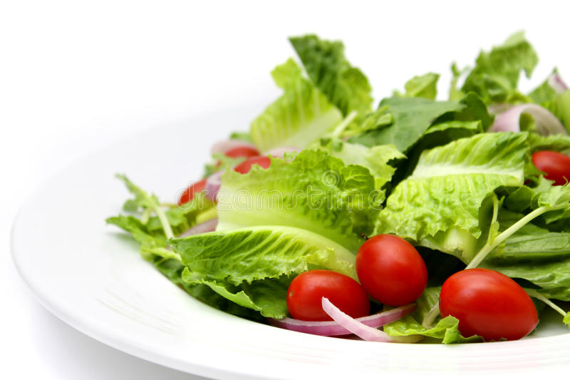 Cos Salad with Tomato royalty free stock photo