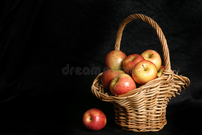 Cosecha Foto de archivo libre de regalías