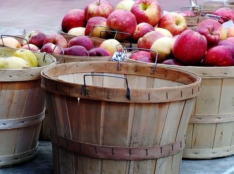 Cosecha de Apple fotografía de archivo libre de regalías