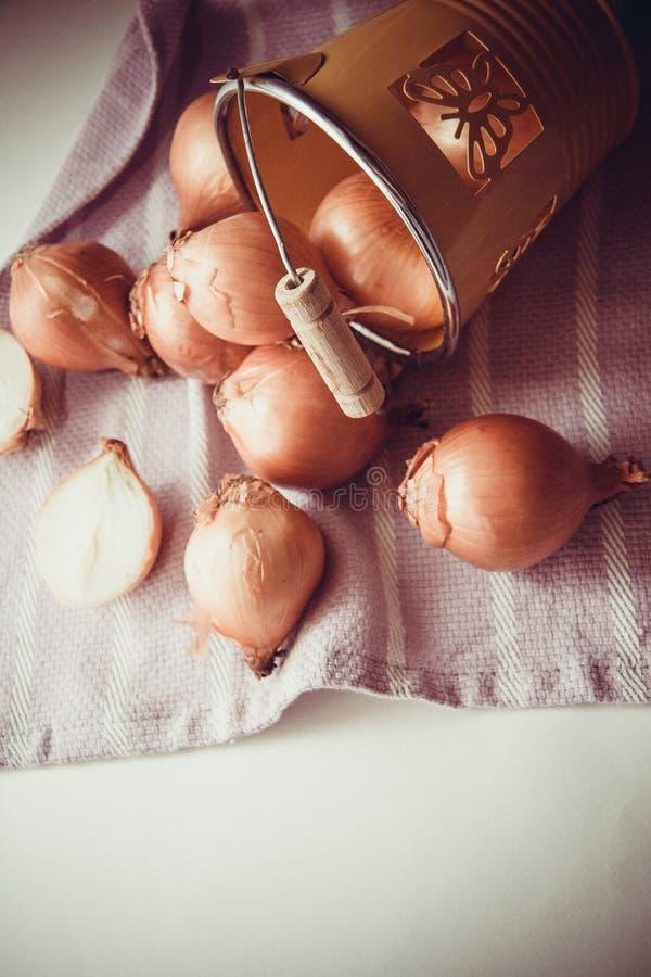 Download Cosecha de cebollas imagen de archivo. Imagen de full - 64213237