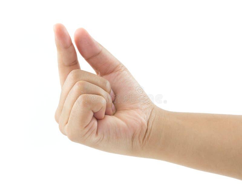 Cosecha de la mano de la mujer imagenes de archivo
