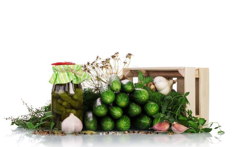 Cosecha de las verduras para el invierno El proceso de conservar en vinagre los pepinos aislados en blanco fotografía de archivo libre de regalías
