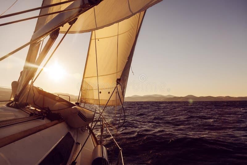 Cosecha del velero durante la regata en el océano de la puesta del sol foto de archivo libre de regalías