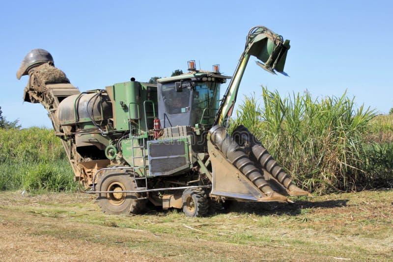 Cosecha mecánica de la caña de azúcar en Australia imagen de archivo
