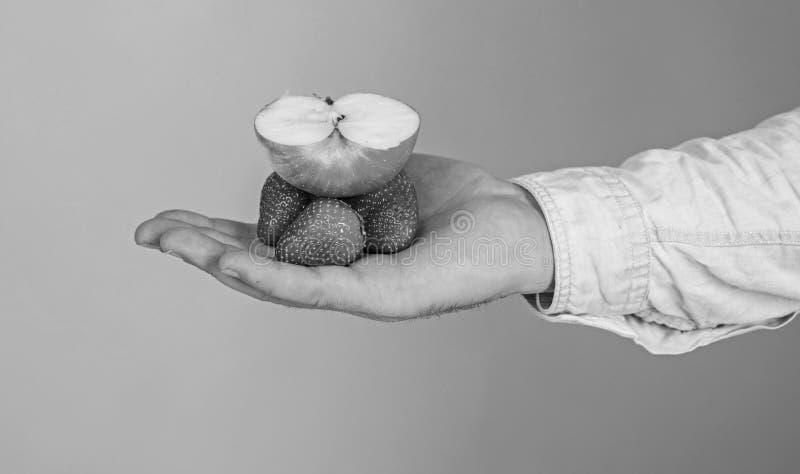 Cosecha orgánica fresca de las bayas maduras de la fruta Dé la fruta de la fresa y de la manzana partido perfecto del gusto para  fotos de archivo