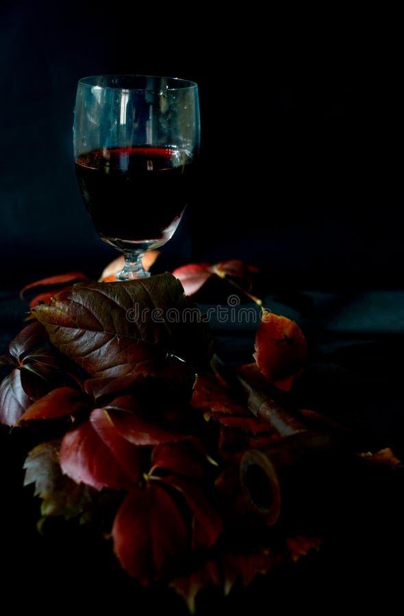Cosecha y vino tinto del otoño fotografía de archivo