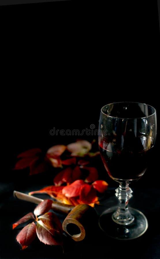 Cosecha y vino tinto del otoño fotografía de archivo libre de regalías
