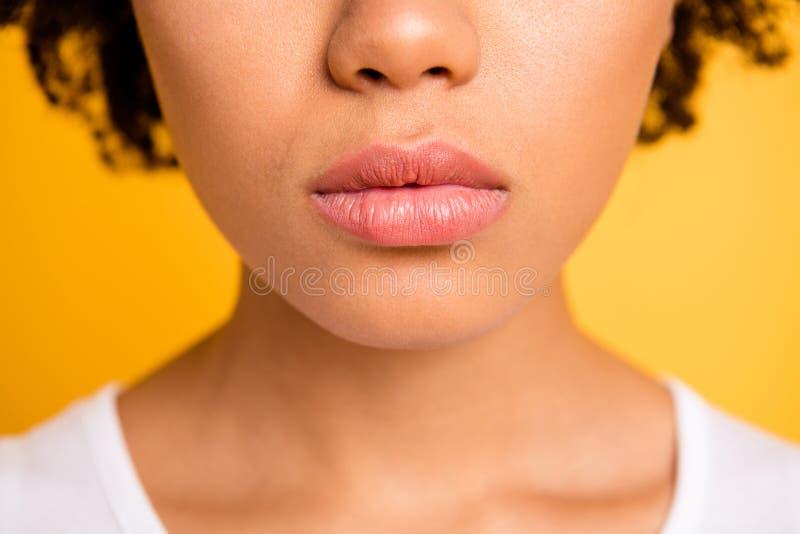 Cosechado cerca encima de asombroso hermoso de la foto su bálsamo regordete grande de los labios de la piel de la boca perfecta o fotos de archivo libres de regalías