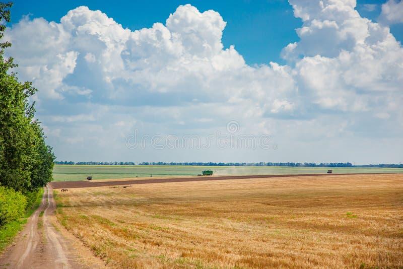 Cosechadora en el campo cosecha paisaje rural de cielo y campo fotografía de archivo libre de regalías