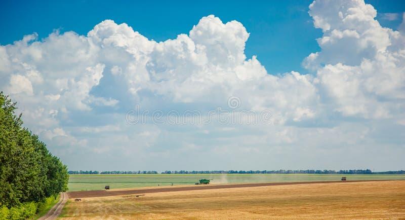 Cosechadora en el campo cosecha paisaje rural de cielo y campo fotos de archivo