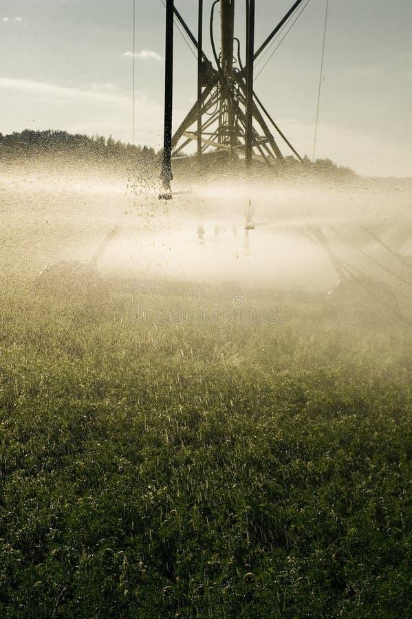 Cosechas de irrigación imagenes de archivo