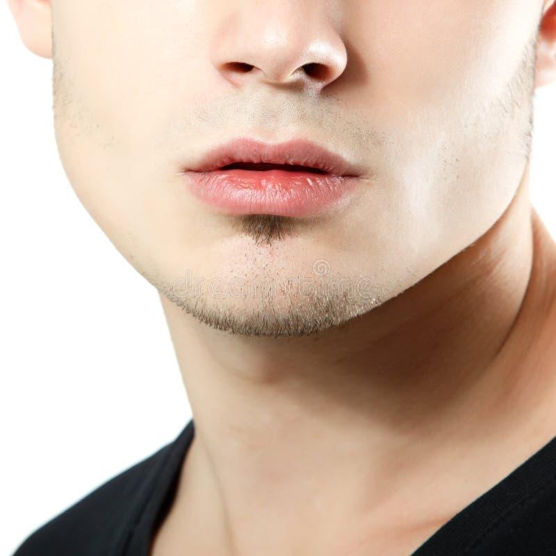 Coseup masculin de lèvres, de menton et de pommette, détail de visage de jeune homme image libre de droits