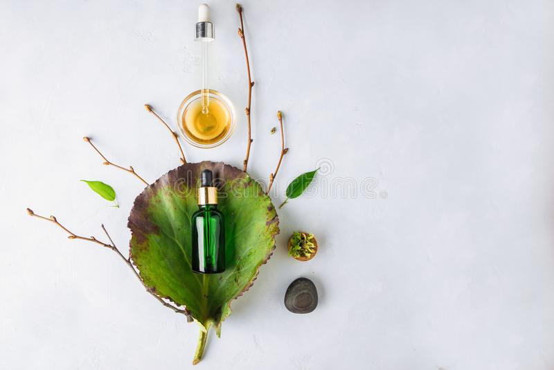 Cosmético orgânico dos termas com ingredientes ervais Soro vegetal para a pele com extratos ervais garrafa de vidro com uma pipet imagens de stock royalty free