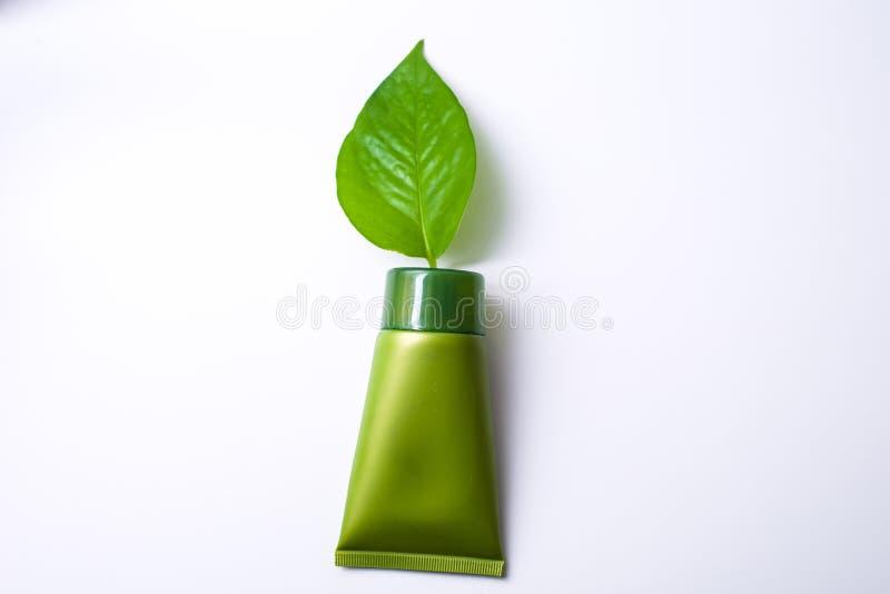 Cosmético verde imagem de stock