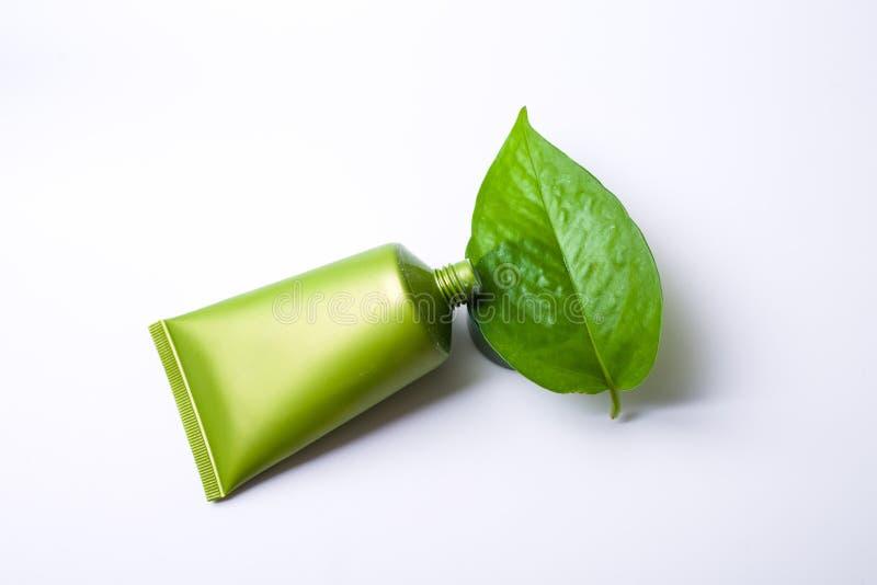 Cosmético verde foto de stock royalty free