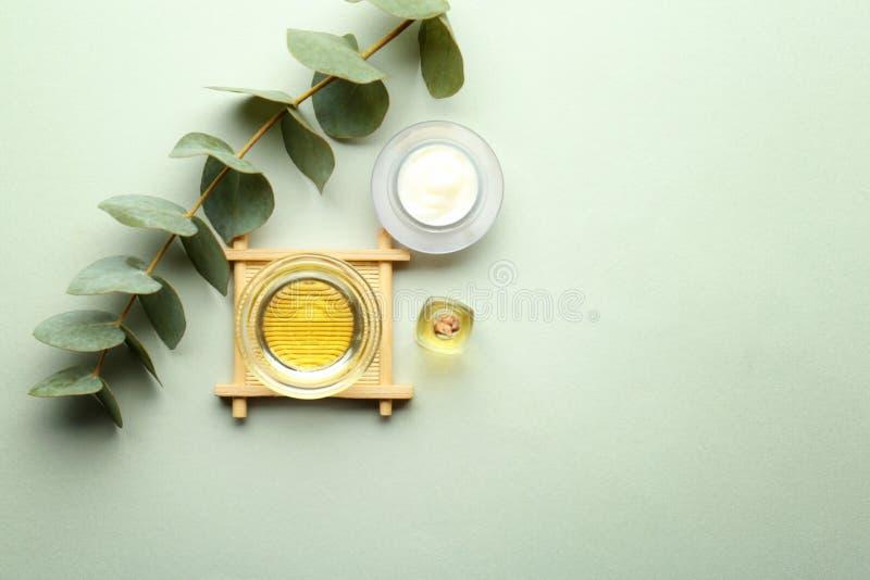Cosméticos con el extracto del eucalipto en fondo ligero imagen de archivo