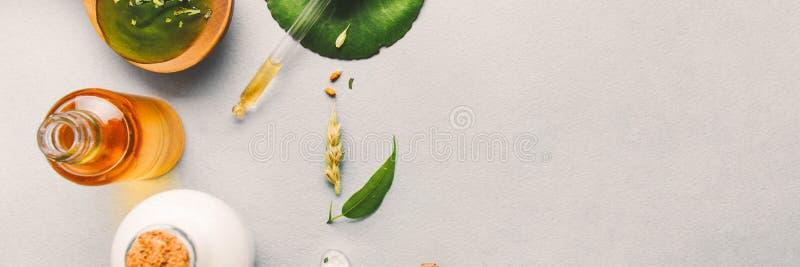 Cosméticos naturais, óleos para cuidados com a pele em um fundo claro Óleos homeopaticamente, soro, leite, sabão Conceito do blog fotos de stock royalty free