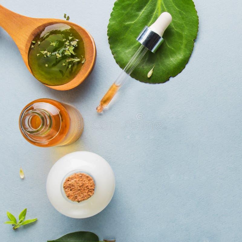 Cosméticos naturais, óleos para cuidados com a pele em um fundo claro Óleos homeopaticamente, soro, leite, sabão Conceito do blog fotografia de stock