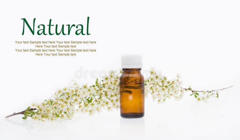 Cosméticos naturais, medicina alternativa fotografia de stock royalty free