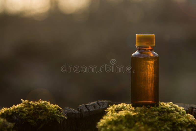 Cosméticos naturais - receita erval, garrafa fotos de stock