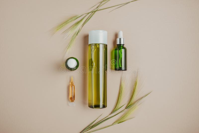 Cosméticos naturais, soro para o cabelo, conceito dos cuidados com a pele de cosméticos orgânicos, naturais Configuração lisa, pa foto de stock