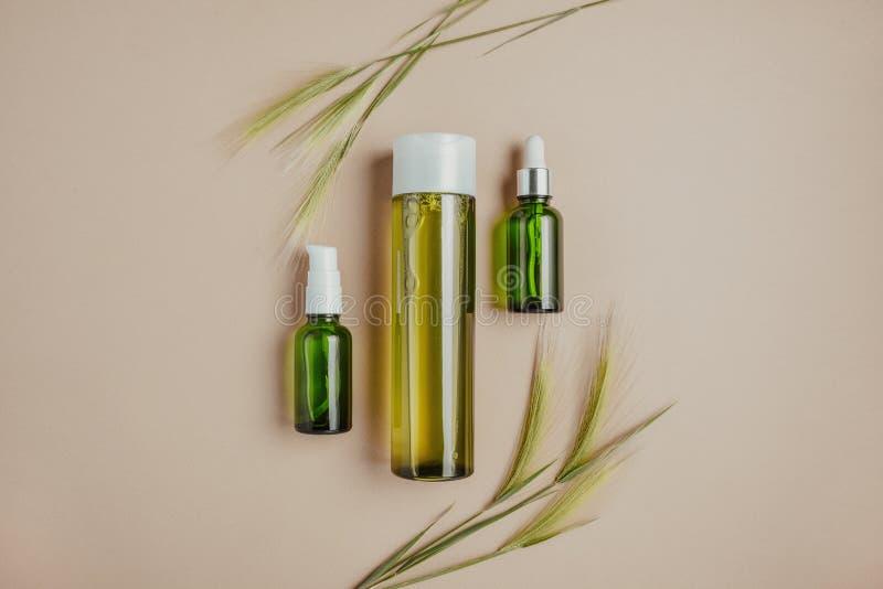Cosméticos naturais, soro para o cabelo, conceito dos cuidados com a pele de cosméticos orgânicos, naturais Configuração lisa, pa imagem de stock royalty free